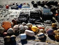 "Objects being collected for ""Sandstars"" (2012) on Isla Arena, Baja California, Mexico. © Gabriel Orozco 2012"
