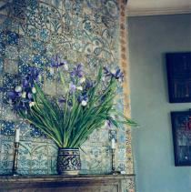 Yto Barrada, Irises on the Mantel, (Iris sur la cheminée), 2009/11. © Yto Barrada. Courtesy the artist and Sfeir-Semler Gallery, Hamburg and Beirut