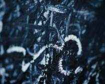 Detail of a painting. Photo Benjamin McMahon