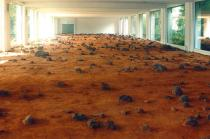 Roman Ondák, Spirit and Opportunity, 2004. Surface of Mars reconstructed in a gallery based on images published in newspapers and magazines. Installation Kölnischer Kunstverein. Courtesy the artist, gb agency, Paris, Janda gallery, Vienna and Johnen gallery, Berlin. Photo: © Roman Ondák