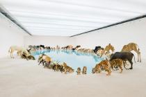 Cai Guo-Qiang, Heritage 2013. 99 life-sized replicas of animals, water, sand, drip mechanism. Commissioned for the exhibition 'Falling Back to Earth', 2013. Photo: Queensland Art Gallery | Gallery of Modern Art