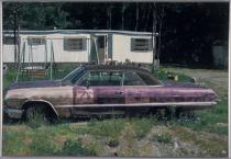 John Salt, Purple Impala,1973. Oil on canvas,