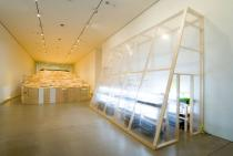 Phoebe Washburn, Regulated Fool's Milk Meadow (installation view), Deutsche Guggenheim 2007, Photo Mathias Schormann